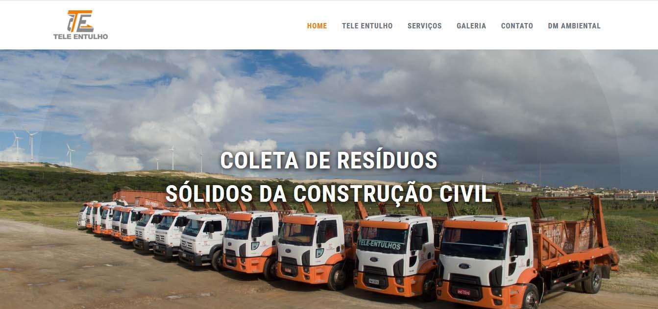 desenvolvimento e criação do website teleentulho.com